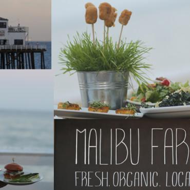 Helene Henderson – The Malibu Farm